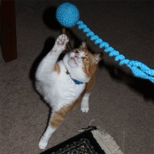 Door Hanger Bouncy Cat Toy - Action Shot